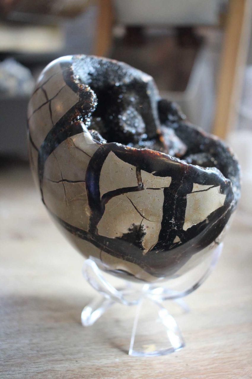Dragon Egg Geode in Case